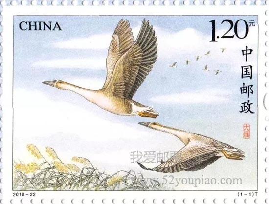 《大雁》特种邮票